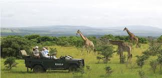 Travel the South African bliss